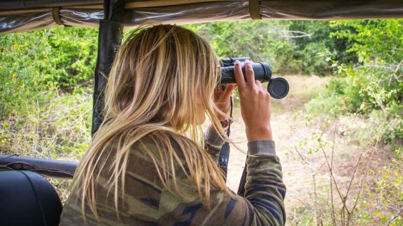 essential items for a safari game drive